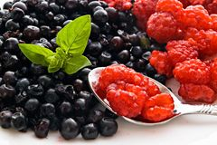Raspberry blueberry and basil. Blueberry basil and raspberry on spoon royalty free stock image