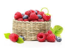 Raspberry and blueberry in basket Royalty Free Stock Images