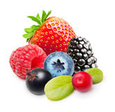 Raspberry and blueberry isolated Stock Photography