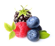 Raspberry and blueberry isolated Royalty Free Stock Images
