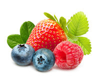 Raspberry and blueberry isolated Royalty Free Stock Photography