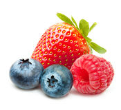 Raspberry and blueberry isolated Royalty Free Stock Image