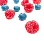 Raspberry and blueberry isolated Stock Photo