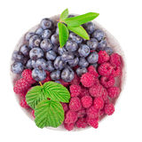 Raspberry and blueberry isolated Stock Photos