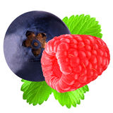 Raspberry and blueberry with leaf. Isolated on white stock photography