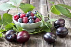 Raspberry, blueberry and plumes Stock Photography