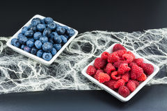 Healthy forest fruits. Red raspberries and blue bilberries. Black background royalty free stock photos