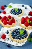 Raspberry and blueberry tartlets with fresh berries and mint leaves royalty free stock images