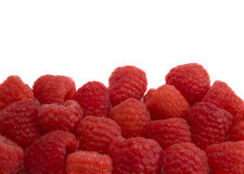 Raspberry Border Royalty Free Stock Photo
