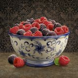 Raspberry Bowl. Arranged in a still life royalty free stock photography