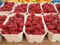 Raspberry boxes. Boxes with fresh juicy raspberries for sale Stock Photography