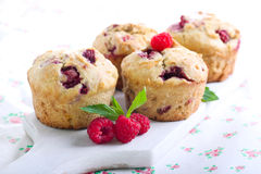 Raspberry bran muffins. Selective focus Royalty Free Stock Images