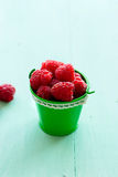 Raspberry in a bucket Royalty Free Stock Image