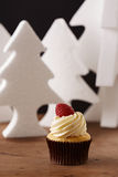 Raspberry and butter cream cupcake on Christmas background Stock Photos
