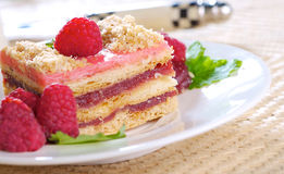 Raspberry cake. Raspberry layer cake with fresh fruits Stock Image