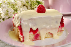 Raspberry cake. With vanilla sauce on a plate Stock Photos