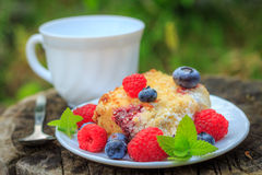 Raspberry cake with crumble Stock Photography