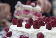 Raspberry cake fiesta Royalty Free Stock Images