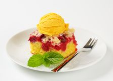Raspberry cake with ice-cream Royalty Free Stock Photo