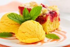 Raspberry cake with ice-cream Stock Images
