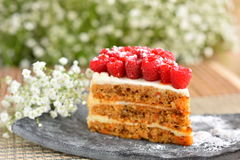 Raspberry Cake on plate. And white flowers Royalty Free Stock Photography