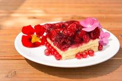 Raspberry cake Royalty Free Stock Image