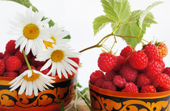 Raspberry and camomiles Royalty Free Stock Image