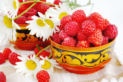 Raspberry and camomiles Royalty Free Stock Photos