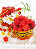 Raspberry and camomiles Stock Photography