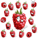 Raspberry cartoon Royalty Free Stock Images
