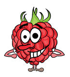 Raspberry cartoon character Royalty Free Stock Images
