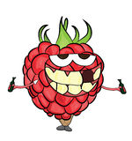 Raspberry cartoon character Stock Images