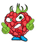 Raspberry cartoon character Royalty Free Stock Image