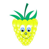Raspberry  cartoon. Raspberry  illustration cartoon character Stock Image