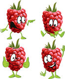 Raspberry cartoon Royalty Free Stock Photos