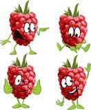 Raspberry cartoon Royalty Free Stock Photos