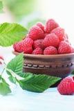 Raspberry, in ceramic bowl Stock Photography
