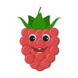 Raspberry character icon Royalty Free Stock Images