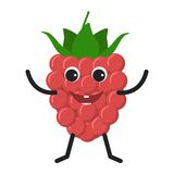 Raspberry character icon Royalty Free Stock Image