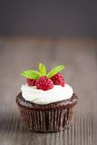 Raspberry chocolate cupcakes Stock Photos