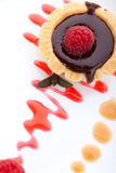 Raspberry chocolate petite cake Royalty Free Stock Image