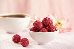 Raspberry chocolate truffles Stock Photos