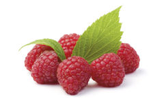 Raspberry Circle Stock Image