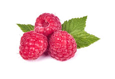 Raspberry in close-up. Fresh raspberry  in close-up Stock Photos