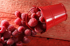 Raspberry close-up. Raspberries  and a small bucket on a wooden background Stock Image
