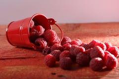 Raspberry close-up Royalty Free Stock Photos