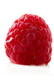 Raspberry closeup. Closeup of one raspberry isolated on white background royalty free stock image
