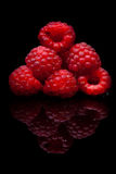 Raspberry closeup. Isolated on Royalty Free Stock Photography