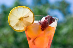Raspberry cocktail Stock Photography