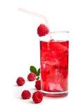 Raspberry Cocktail Stock Image